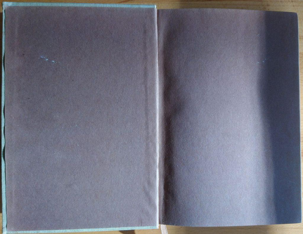 Hermann Hesse: Peter Camenzind. Berlin: S. Fischer Verlag, 1917. Vorsatz
